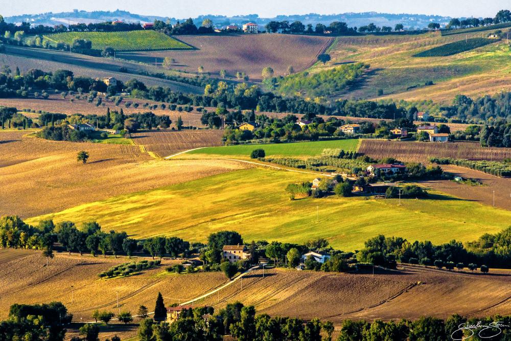 La campagna maceratese tra agosto e settembre - Gianluca Storani Photography