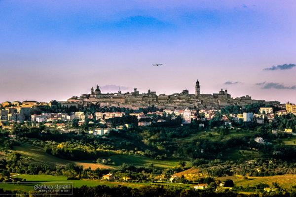 Sospeso in volo - Gianluca Storani Photo Art (ID: 1-7797)