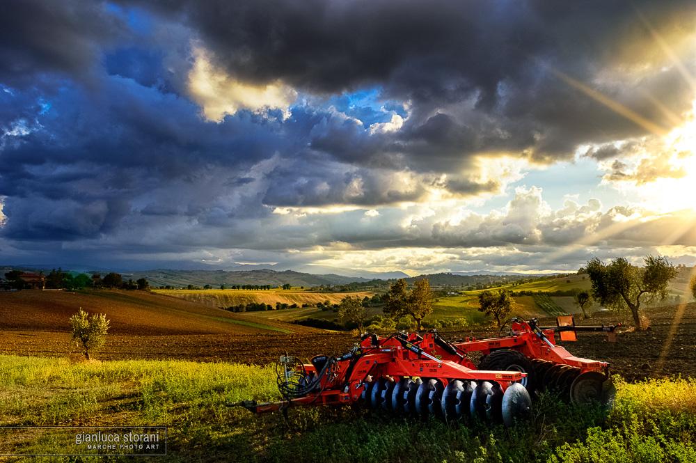 Impressioni di fine settembre - Gianluca Storani Photo Art (ID: 1-6458)