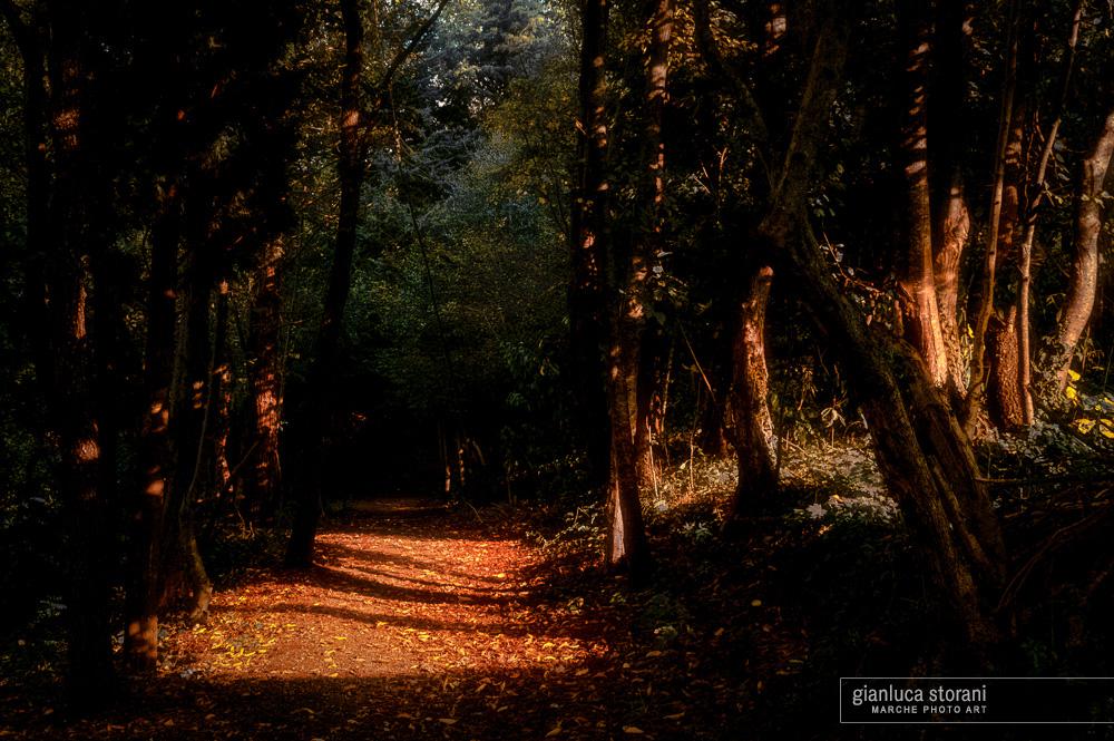 La notte oscura dell'anima - Gianluca Storani Photo Art (ID: 3-0855)