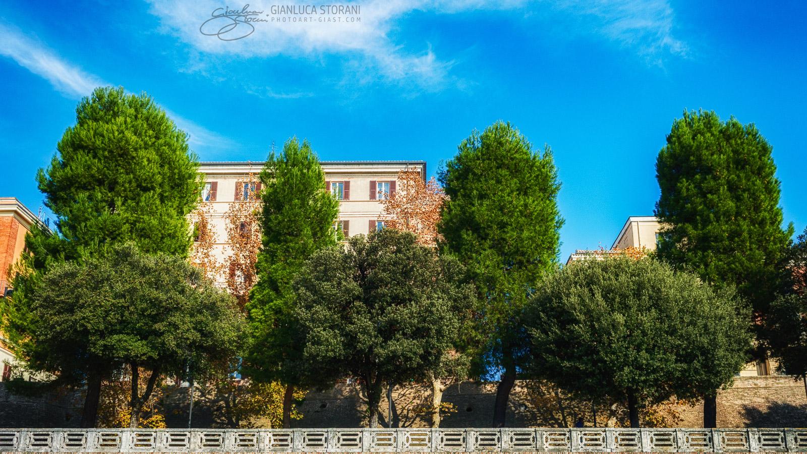 Viale Puccinotti dai Giardini Diaz - Gianluca Storani Photo Art (ID: 1-9549)