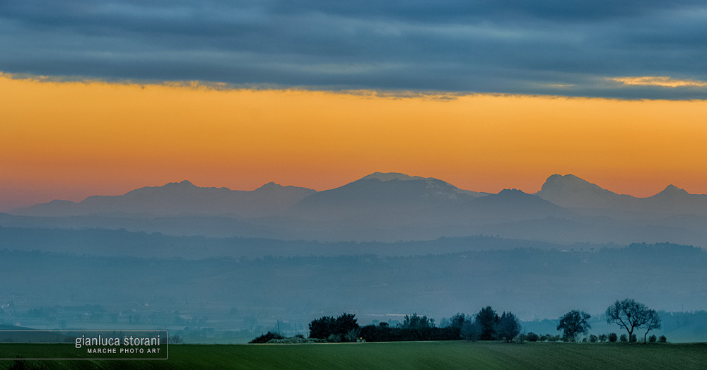 Soft Shades - Gianluca Storani Photo Art (ID: 4-7302)