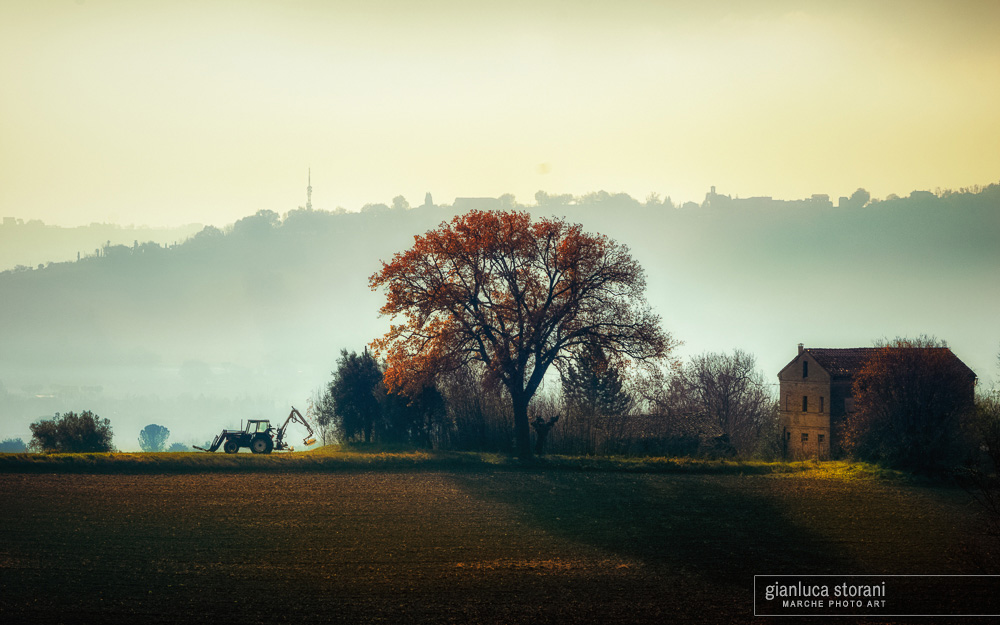 Solstizio d'inverno nelle campagne di Macerata - Gianluca Storani Photo Art (ID: 4-7107)