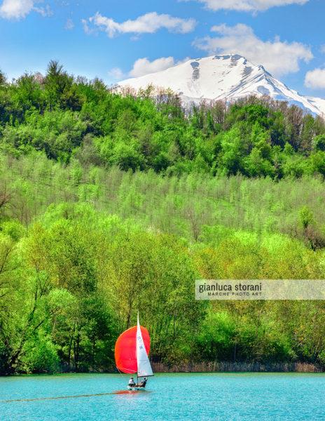 Sail in red - Gianluca Storani Photo Art (ID: 5-0724)
