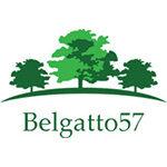 logo_belgatto