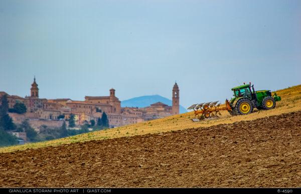 Su per il colle con il trattore, sullo sfondo Pollenza