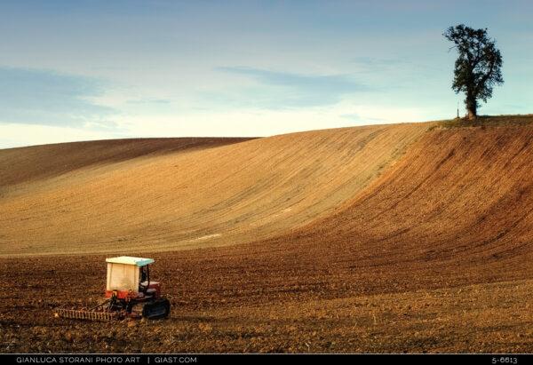 Le Colline Novembrine visitate da un trattore
