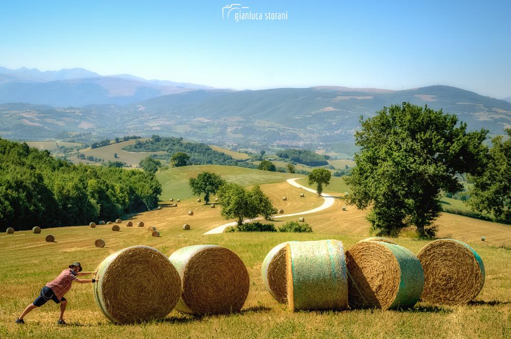 In questa foto il bellissimo panorama della Collina dei ciliegi nelle campagne di San Severino Marche.