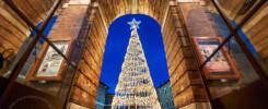 L'albero di Natale tech di Macerata