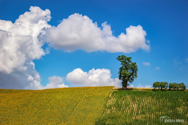 Il mostro delle nuvole - Gianluca Storani Photo Art (Cod. 7-5184)
